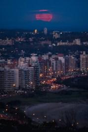 Montevideo, MO