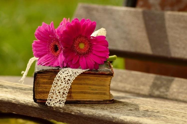 Bibel mit Blume auf einer Bank im Freien.