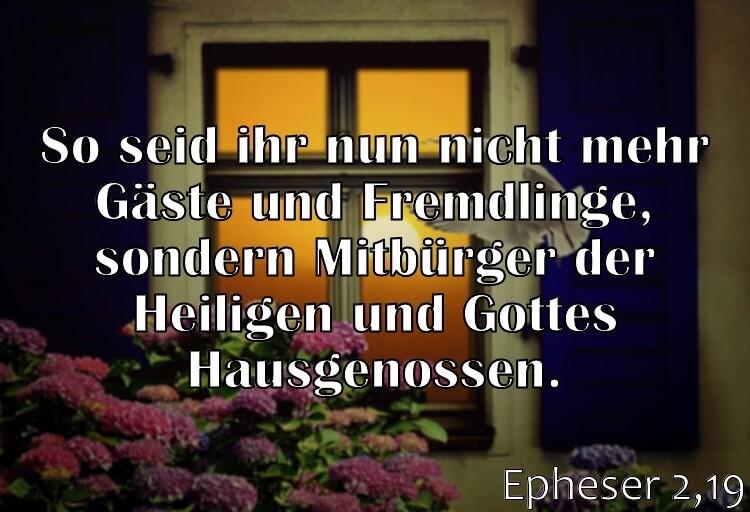 Wochenspruch 31 / 2017: Epheser 2,19: So seid ihr nun nicht mehr Gäste und Fremdlinge, sondern Mitbürger der Heiligen und Gottes Hausgenossen.