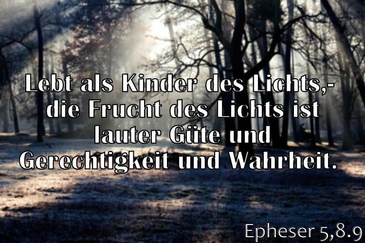 Wochenspruch 32 / 2017: Epheser 5,8.9: Lebt als Kinder des Lichts; die Frucht des Lichts ist lauter Güte und Gerechtigkeit und Wahrheit.