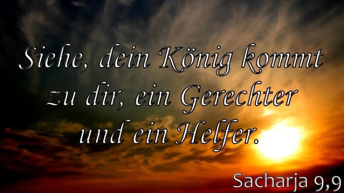 Wochenspruch 49 / 2017: Sacharja 9,9: Siehe, dein König kommt zu dir, ein Gerechter und ein Helfer.