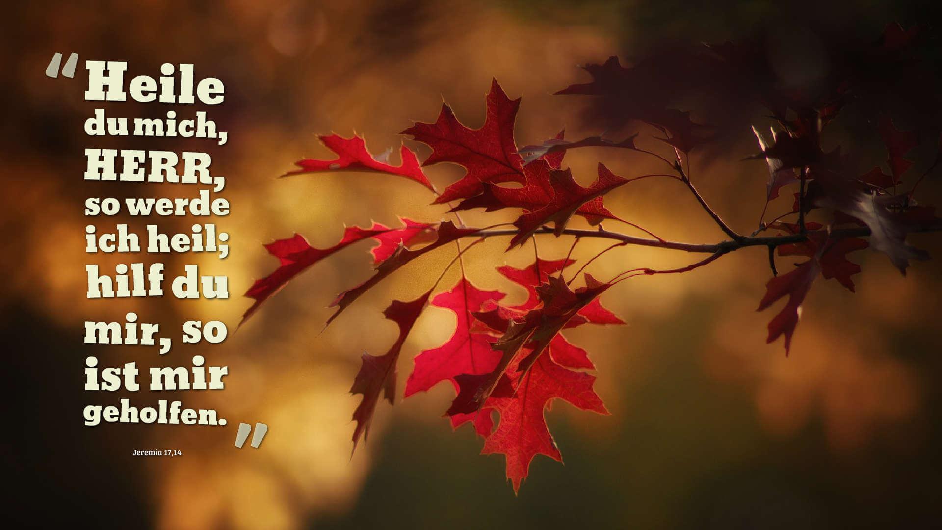 Heile du mich, HERR, so werde ich heil; hilf du mir, so ist mir geholfen. - Jeremia 17,14