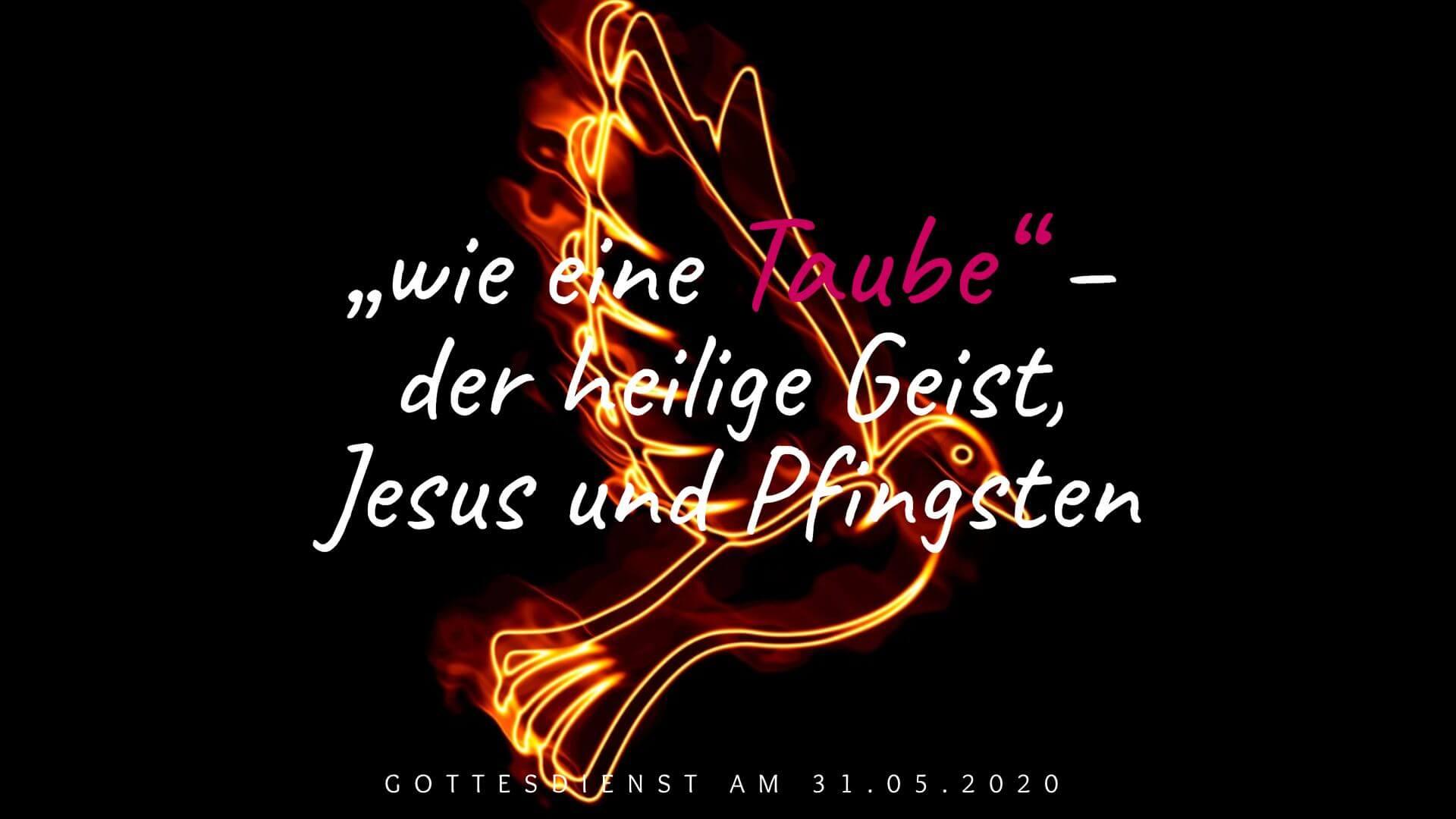 """""""wie eine Taube"""" – der heilige Geist, Jesus und Pfingsten - Gottesdienst am 31.05.2020"""
