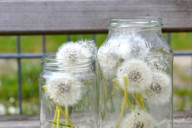 Pusteblumen Make a wish - Pusteblumen im Glas - ein Glas voller Wünsche