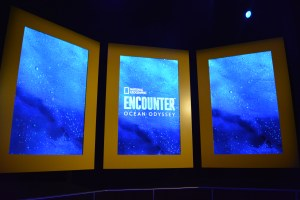 National Geographic Encounter Ocean Odyssey New York | Vancouver Full Service Digital Agency | Feifei Digital Ltd 2019