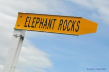 747_elephant_rock