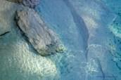 969_blue_pools