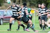 1514_Rugby_Westcoast