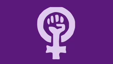 feminism - choice, liberal, feminism