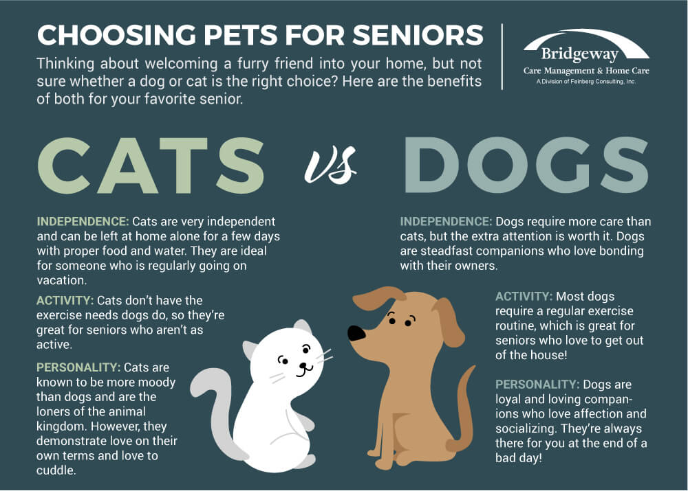 Helping Paws: The Benefits of Pet Ownership for Seniors