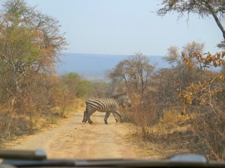 The original zebra crossing