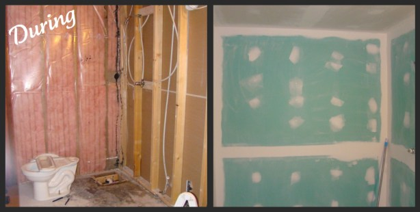 Bathroom Reno During