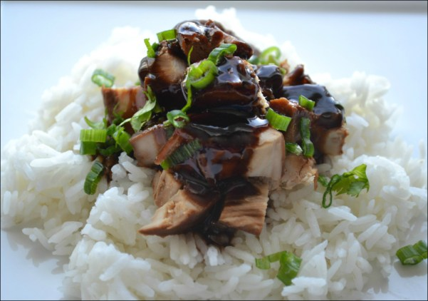 Crock Pot Teriyaki Chicken 2