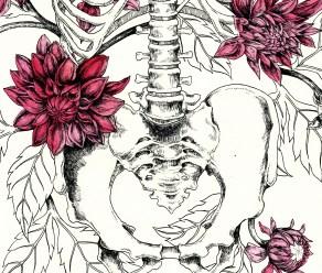 burton-board-original-drawing-of-dahlias-detail-2