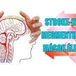 stroke-kvíz