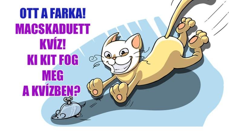 Ott a farka! Macskaduett kvíz! Jól ismered a dalt?