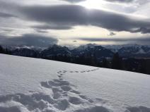 ÖWR-Feldkirch-Rodeln4