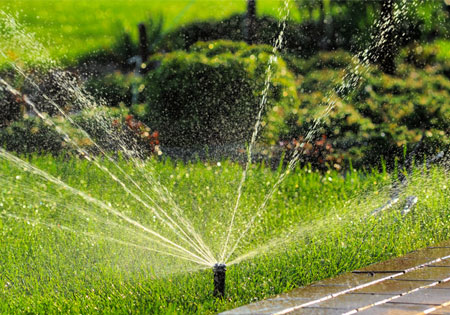 six tips hot weather landscaping