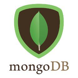 MongoDB Training at Felight