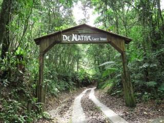 De Native Guesthouse Tanah Rata (28)