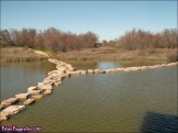 51 - Lagunas de Villafafila12