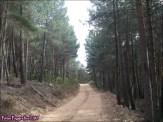 70 - Sierra de la Culebra14
