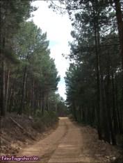 70v - Sierra de la Culebra2