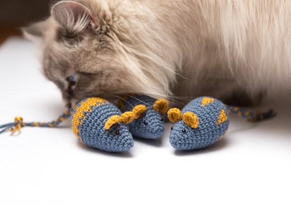 Mysz z walerianą dla kota
