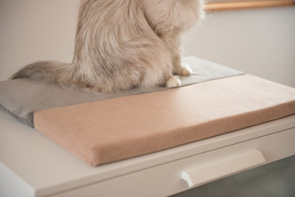 legowisko dla kota szare na parapet 20cm