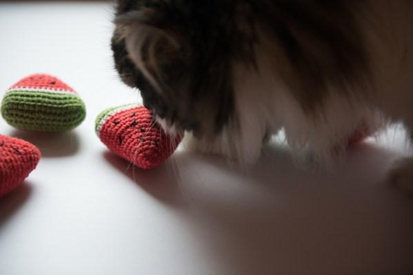 Zabawka dla kota arbuz z kocimiętką