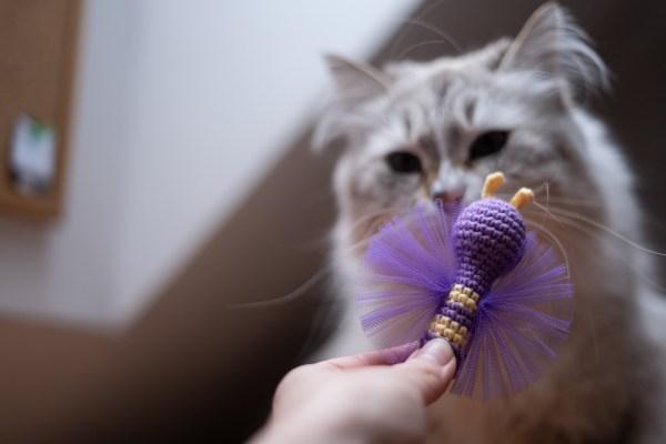 motyl zabawka dla kota kocimiętka tiul