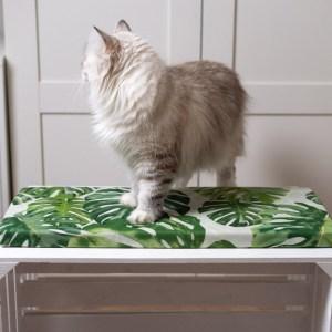 legowisko dla kota na parapet monstera 26cm