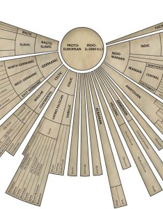 This is  very interesting chart showing the origin of language also and evolution significance rh felissajoann wordpress