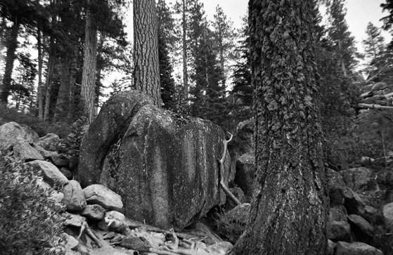 Yosemite 01