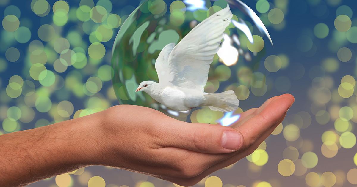 Constructores de la Paz desde la justicia y el amor (segunda parte)