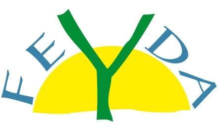 La Asociación Feyda: Un proyecto innovador vicenciano. Antecedentes.