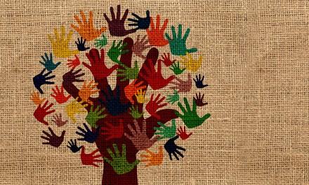 Asociación para la cultura y el desarrollo Castilla la Mancha