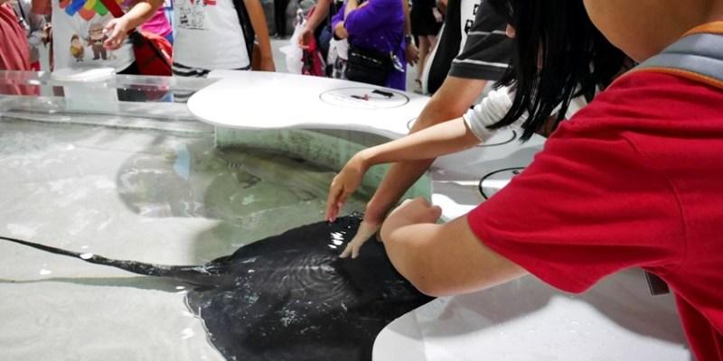 大阪親子遊|大阪海遊館~與魟魚和鯊魚的親密接觸 小孩最難忘的觸摸區