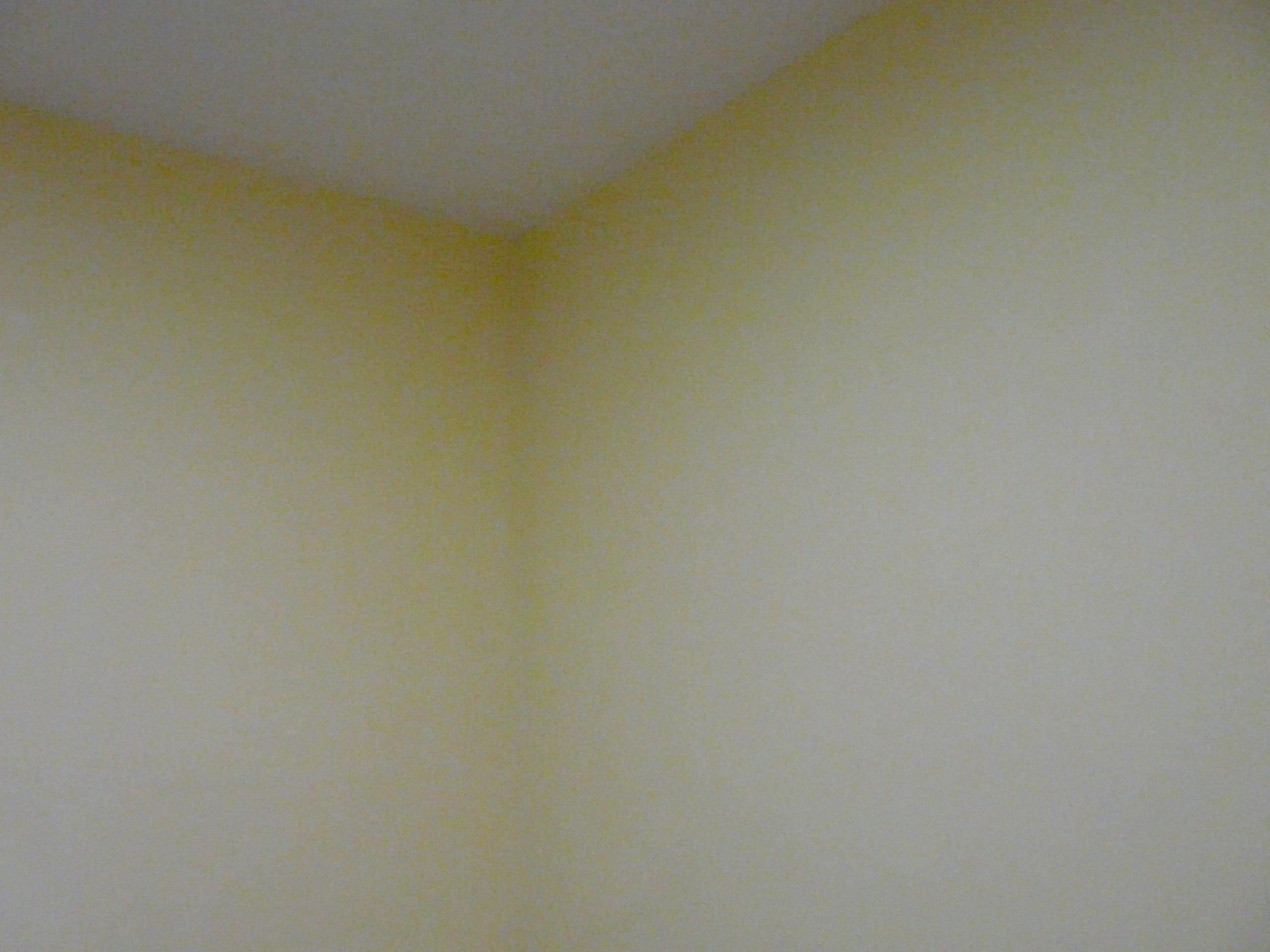 cores  Feliz apartamento novo