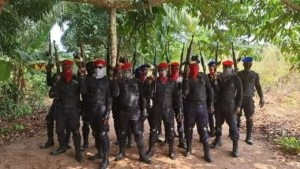 Council of traditional rulers decry killings, militarisation of S'East