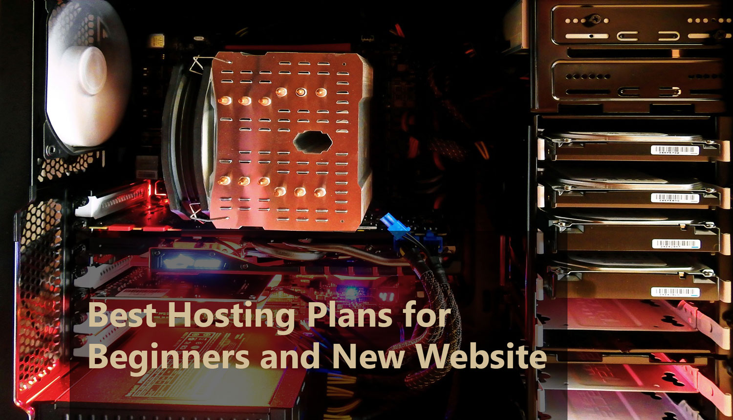 Best Hosting Plans for Beginners and New Website