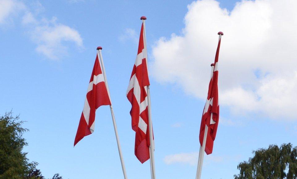 Dannebrog er hejst ved sportspladsen Foto: Karin Munk