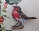 Sweet Robin brooch