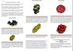 Coral Reef PDF