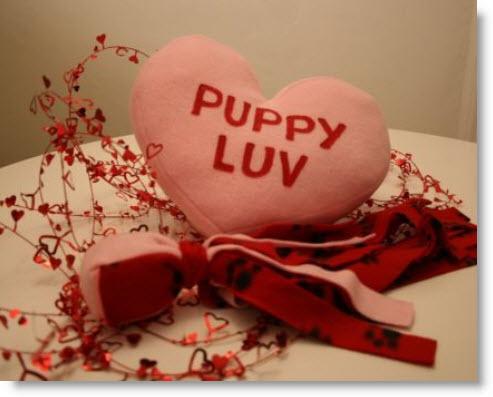 Puppy Pal!