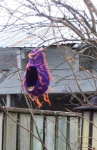 bird house and chickadee