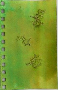 Pine Moss Page