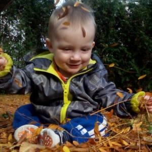 Fynn in the leaves