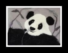 Lyns panda