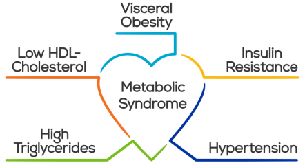 Features of metabolic syndrome